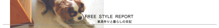 FREE STYLE REPORT